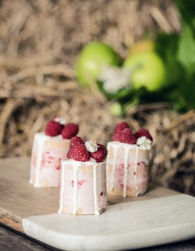 Norwood park newark rustic orchard strawberry wedding -2178