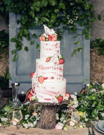 Norwood park newark rustic orchard strawberry wedding -2183